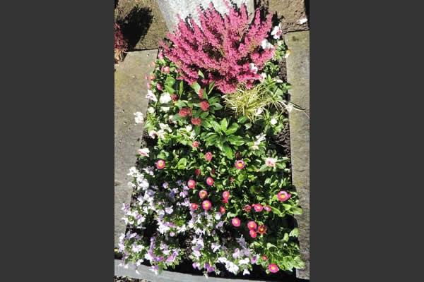 Herbst Innendekoration : herbst grabbepflanzung : Grabbepflanzung ...